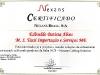 certificado-nexans-edivaldo